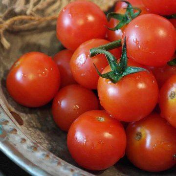 Как выбрать хорошие помидоры